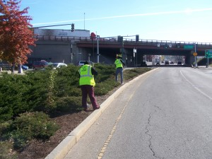 Diversion workers improve the median on East Central Street in Worcester.